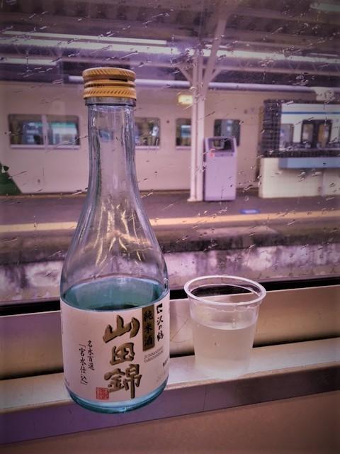 熱川温泉修善寺IMG_8566 (002).jpg